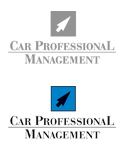 carprofessinalmanagement